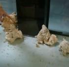 Poser des roches au sol