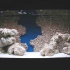 eDécors de fond et roches céramiques