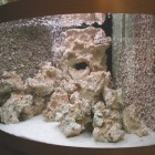 Décors de fond dans aquarium d'angle Trigon