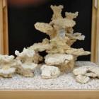 Décor avec roche 9526 - pour Red Sea Max 130