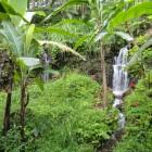 Bali - cascade